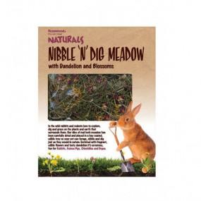Trozo de Jardín Rosewood Con Diente de León y Flores
